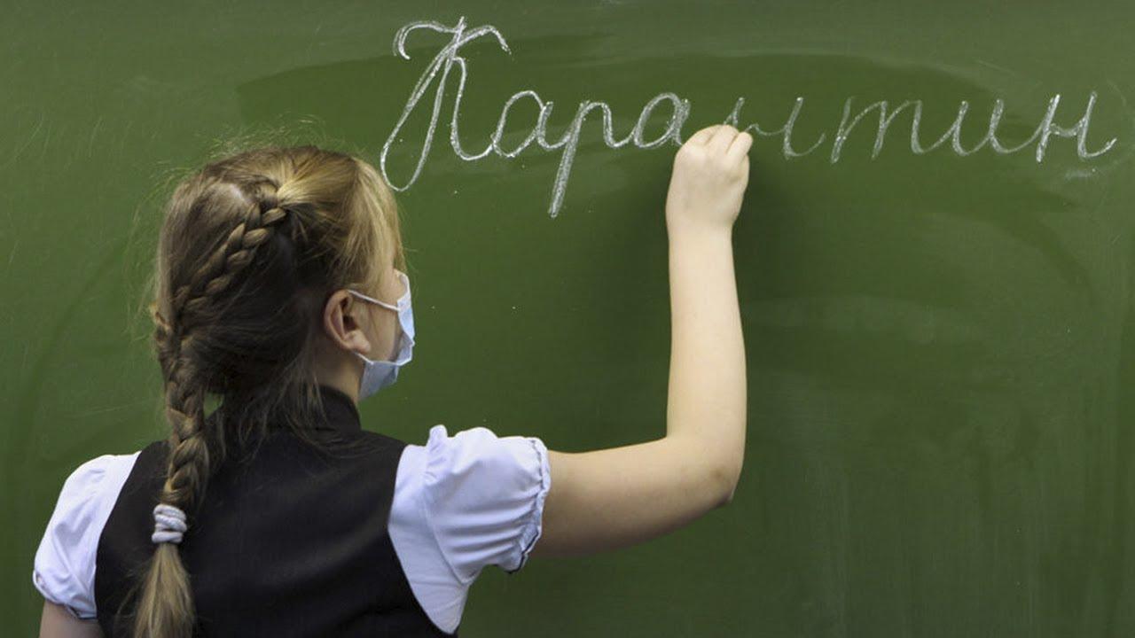 При коклюше в образовательных организациях объявляют карантин
