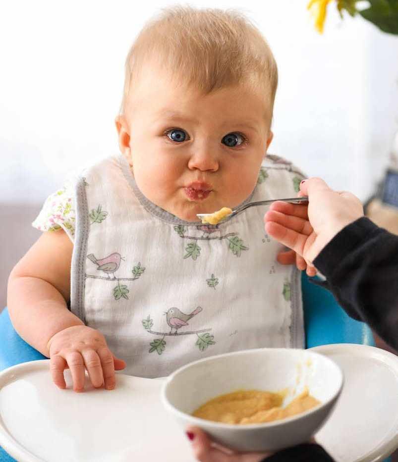 Прикармливать малыша следует постепенно