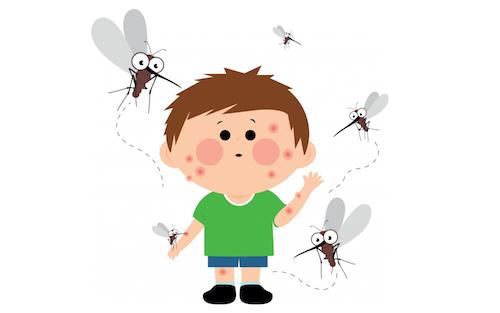 Для чего насекомые кусают