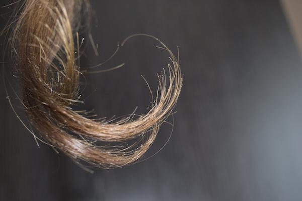Как выглядят секущиеся волосы