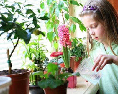 Дети учатся заботиться о природе