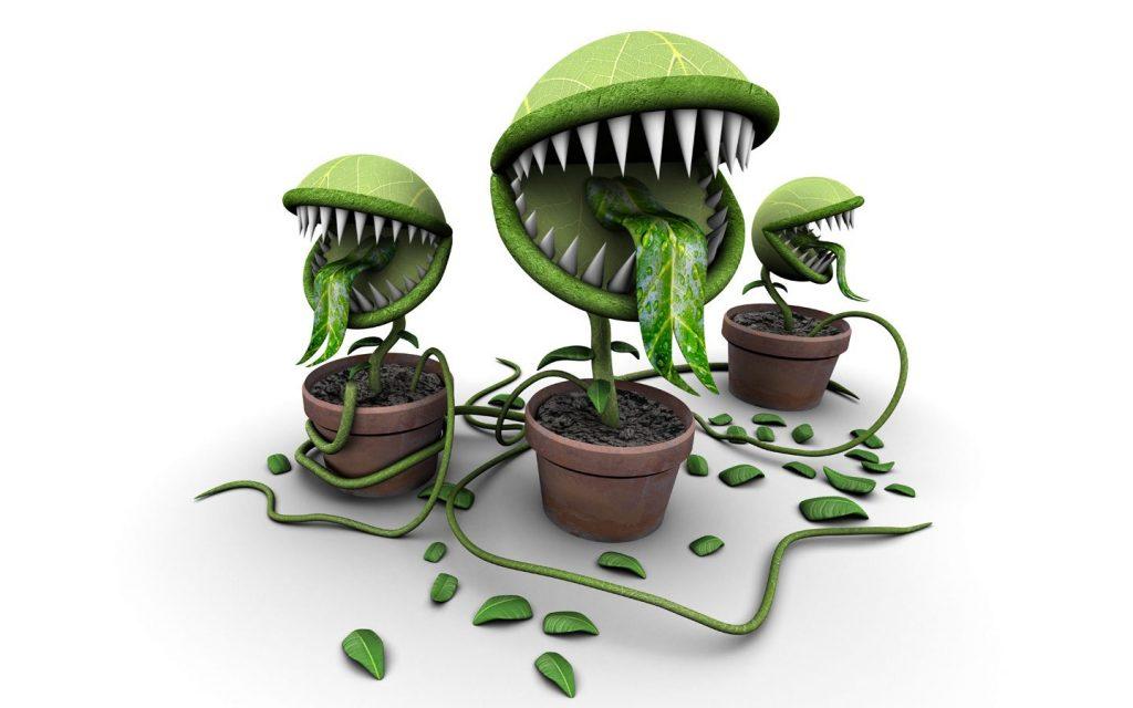 Прикольные картинки хищных растений