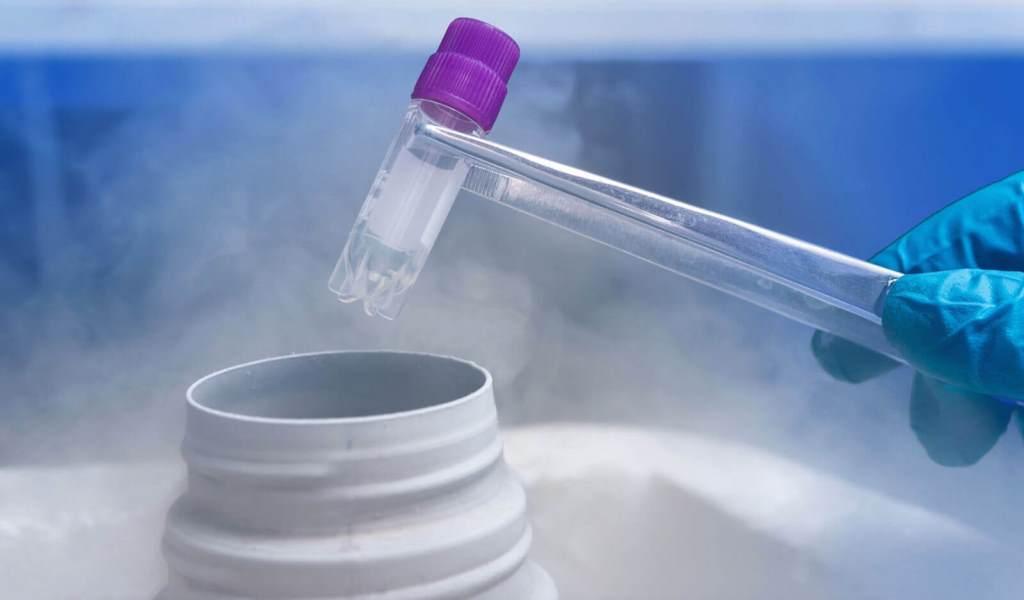 Эмбрионы можно заморозить и хранить криобанке для последующей попытки ЭКО